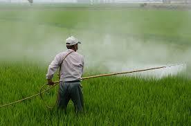 medidas contra los contaminantes hormonales