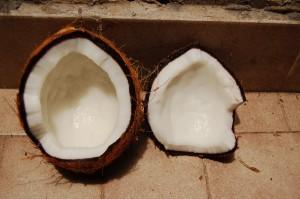 coco no solo sirve comer